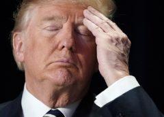 Дональд Трамп обеспокоен вмешательством России в выборы США