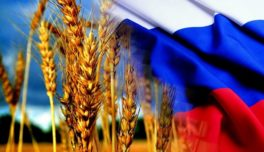 Экспорт российского зерна вырос в 2018 году