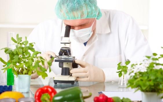 Определён список вредных продуктов питания