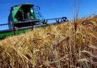 Сельское хозяйство принесло рекордную экспортную выручку