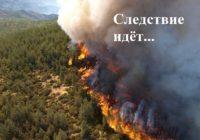 Нас обманули по поводу лесных пожаров в Сибири?