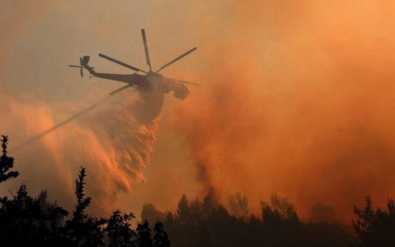 Сколько пожаров потушило Министерство обороны РФ?